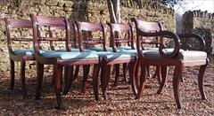 260120189 19th Century Regency Mahogany Dining Chairs Single 31h 18w 20d 17½h carver 31h 20w 21d wrong height _4.JPG