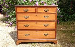 oak and mahogany antique chest of drawers1.jpg