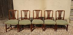 5AntiqueElmDiningChairs21w19d17halfhSeat36h_1.JPG